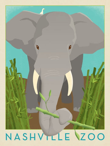 Nashville Zoo (Elephant) by Anderson Design Group