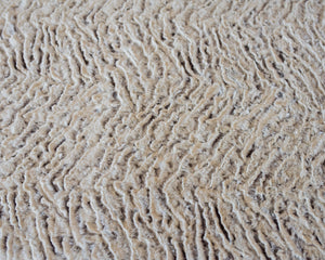 "Shannon Fabrics Frosted Zebra Soft Cuddle 58-60"" Wide, Brown/Natural."