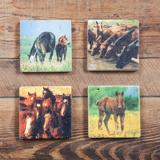 4 PC Horses Coaster Set