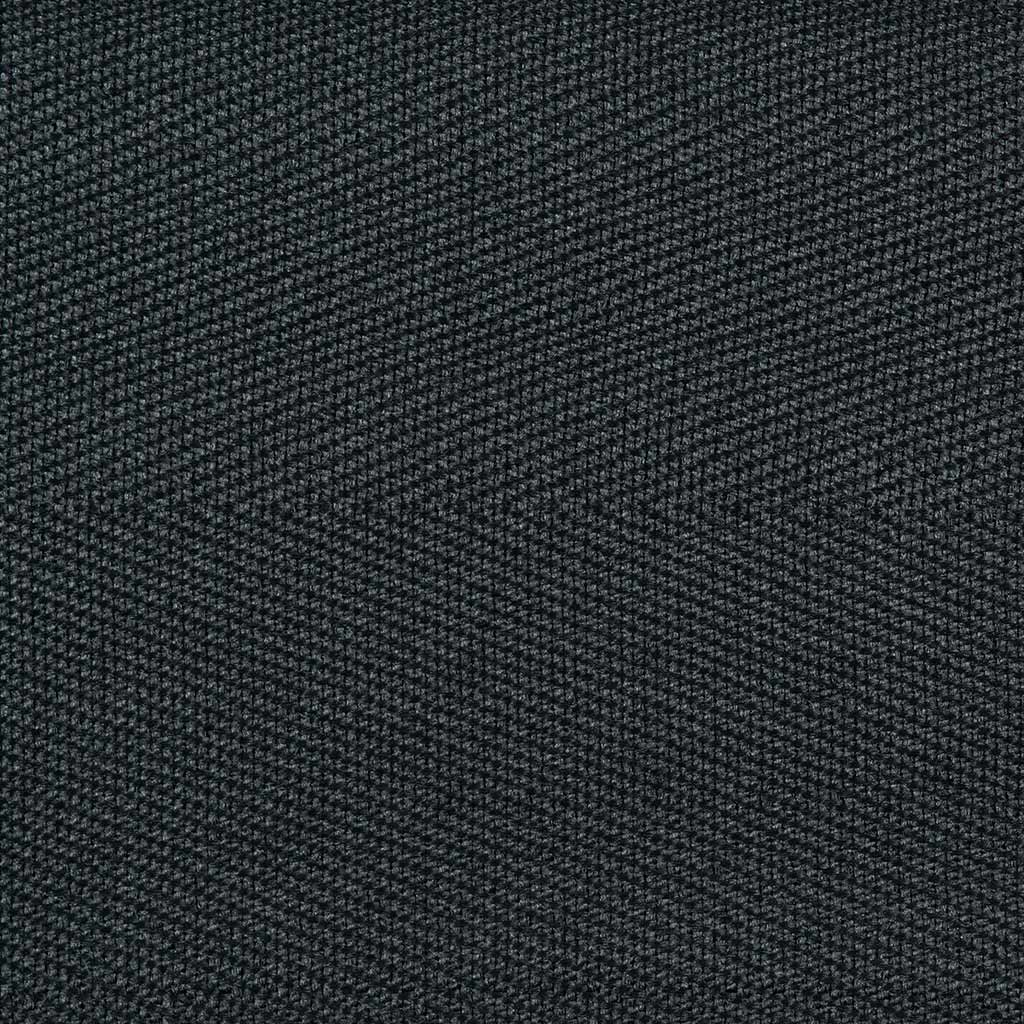 Charcoal Binding Sample