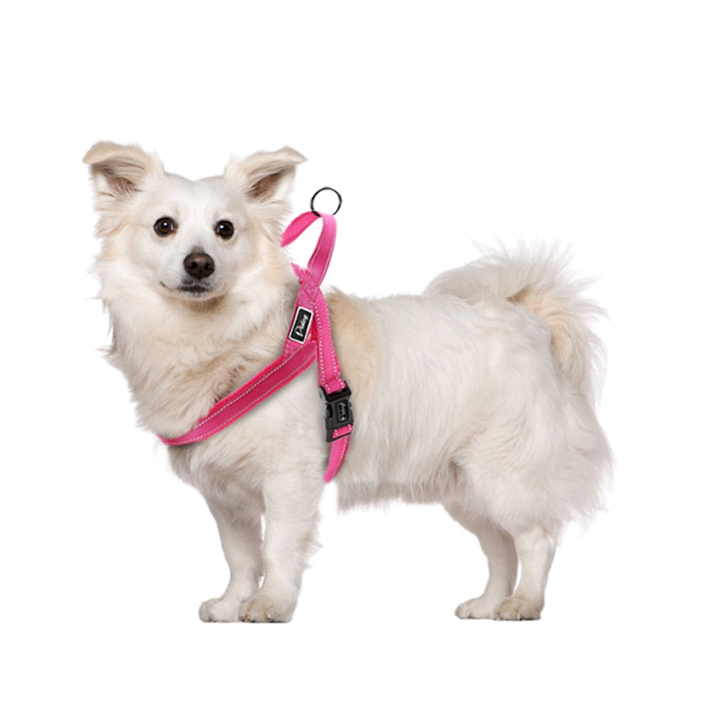 No Pull Reflective Dog Harness and Leash for Dogs