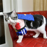 Funny Dog Cat Costumes