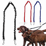 Double Dog Leash Walking Leads