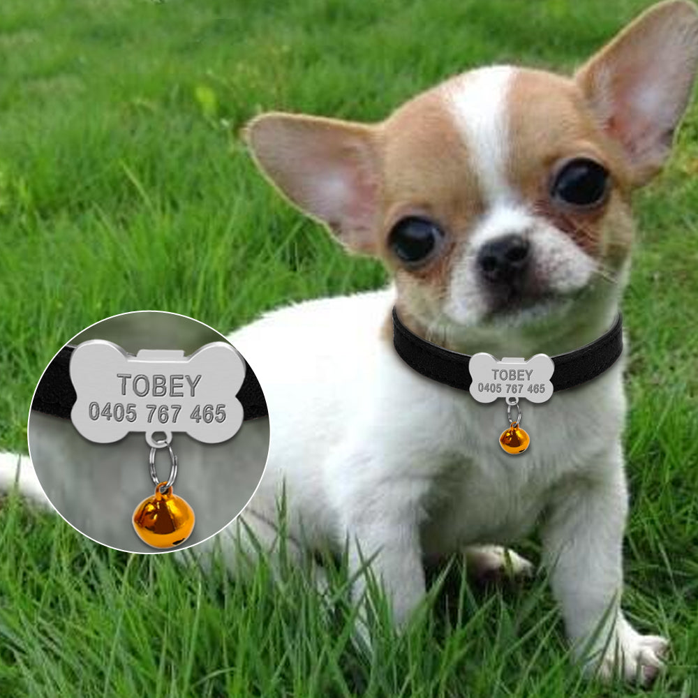 Personalized Dog Collars for Chihuahua Puppy
