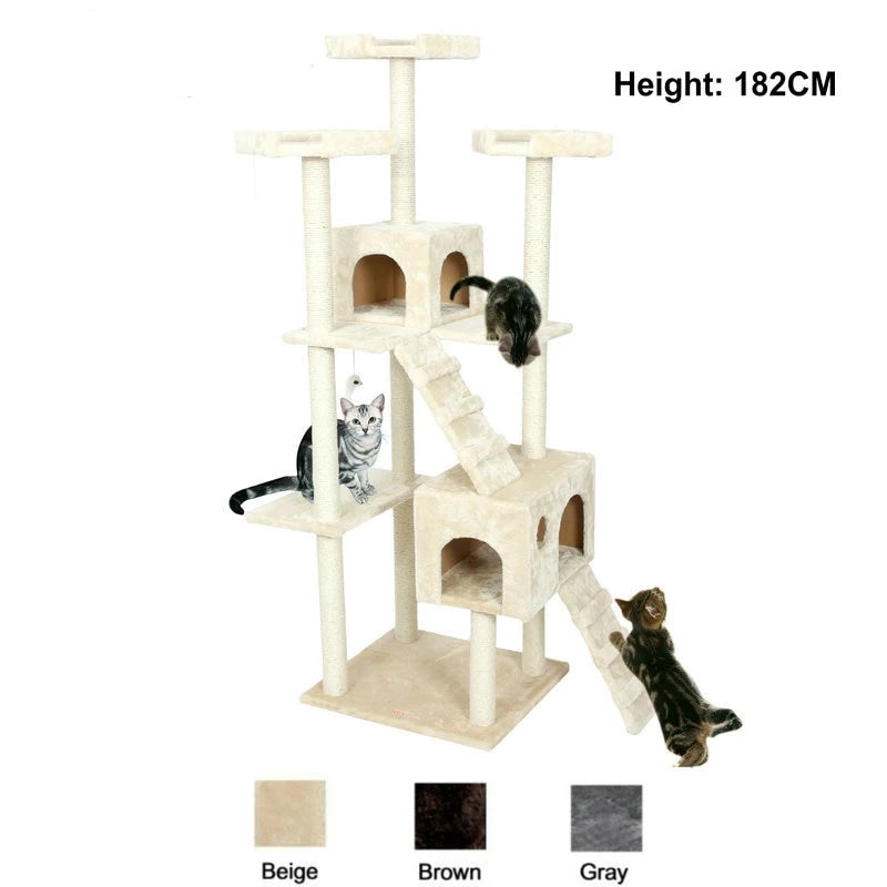 Kittens Pet House Play