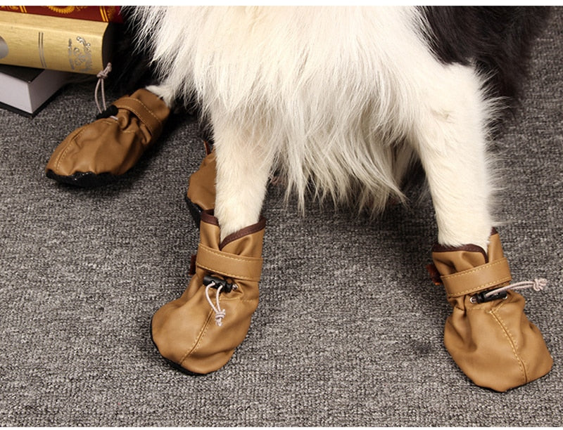 Dog leather Sport Shoes & Pitbull Golden Retriever Home Shoes