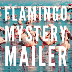 Flamingo Mystery Mailer by Prep Obsessed - Ships in 2-3 Weeks