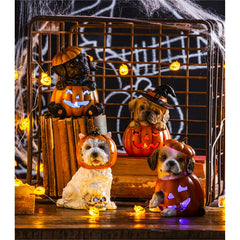 LED Jack-O-Lantern Dogs - Choice Of Style
