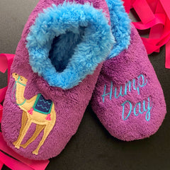 Camel Hump Day Slippers