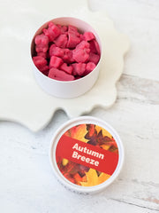 Happy Wax Soy Melts Tin - Autumn Breeze
