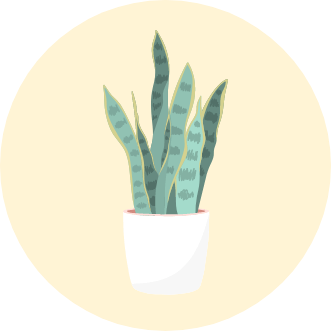 how to keep plants alive icon