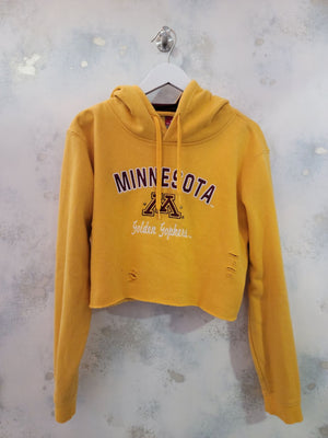 Re/Worked Vintage Distressed Sweatshirt - Minnesota