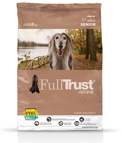 FullTrust - Senior - Sabor Pollo