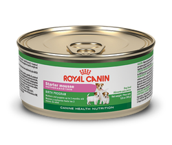 Royal Canin Starter Mother and Baby Dog (Húmedo)