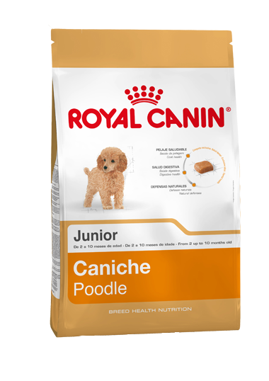 Royal Canin Mini Poodle