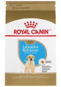 ROYAL CANIN BHN Labrador Retriever Puppy
