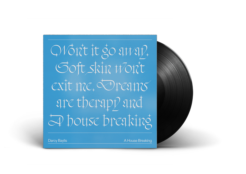 A HOUSE BREAKING VINYL