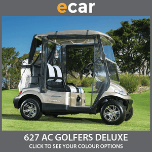 ECAR 627 Series AC POWER Golfers DELUXE Package 2 Seat NEW GOLF CART Buggy
