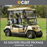A2 New 2 Seat Golf Cart Buggy Champagne Gold