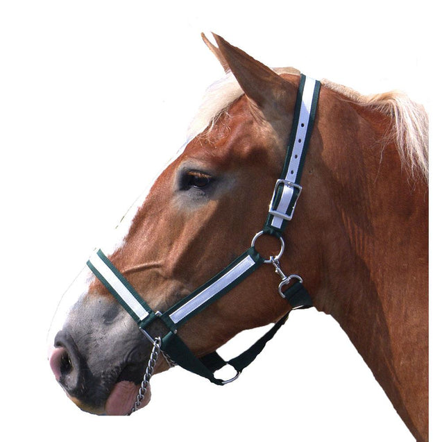 Horse Halter - Draft Horse - Nylon - Best Friend Equine