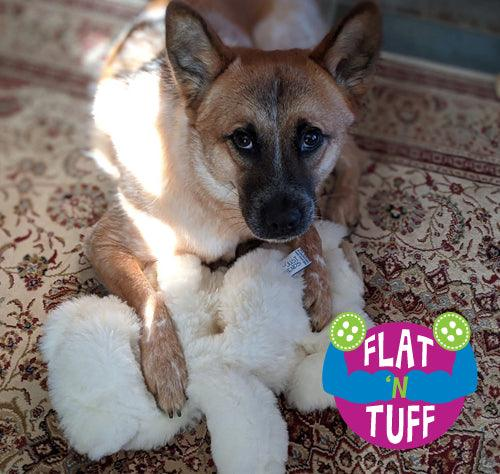 Extra Large FLAT 'N TUFF Dog Toy with NO STUFFING