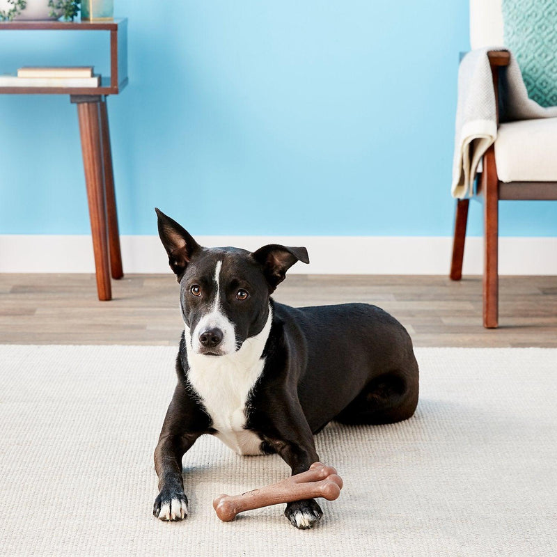 Wishbone Bam-Bones: Made with Bamboo Fiber CHEAPER THAN CHEWY!