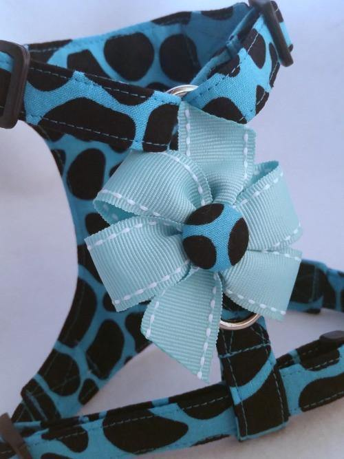 Blue Animal with Button & Bow