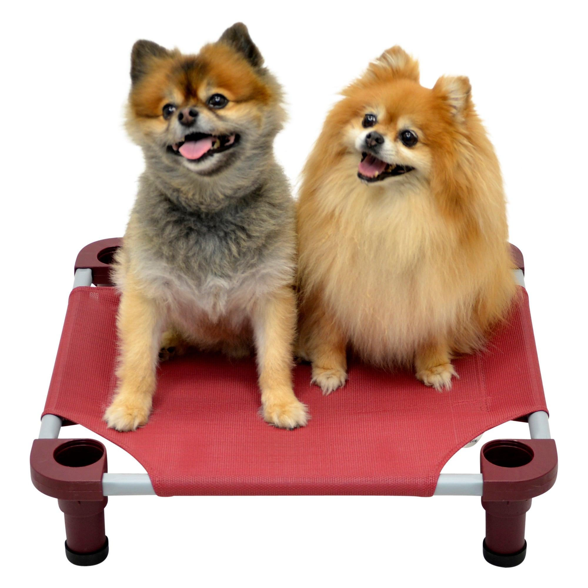 Wish List: 4Legs4Pets Elevated Dog Bed for Fetch Foster & Rescue