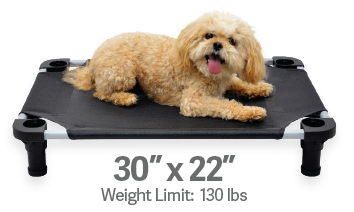 "4Legs4Pets Elevated Dog Bed: 30""x22"""