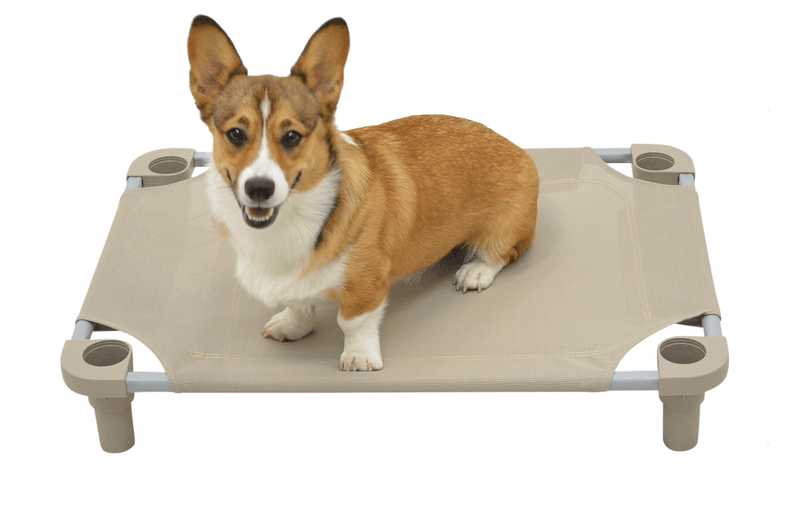 Wish List: 4Legs4Pets Elevated Dog Bed for TCAS Volunteers