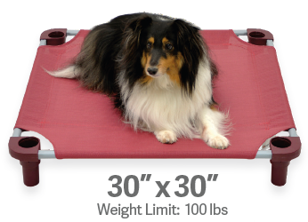 "4Legs4Pets Elevated Dog Bed: 30""x30"""