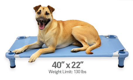 "4Legs4Pets Elevated Dog Bed: 40""x22"" - Glad Dogs Nation 