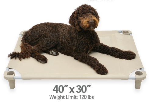 "4Legs4Pets Elevated Dog Bed: 40""x30"""