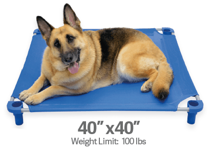 "Legs4Pets Elevated Dog Bed: 40""x40"""