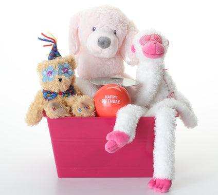 20% OFF! Happy Birthday Pink & SQUEAKY Dog Gift Basket: 3 Sizes