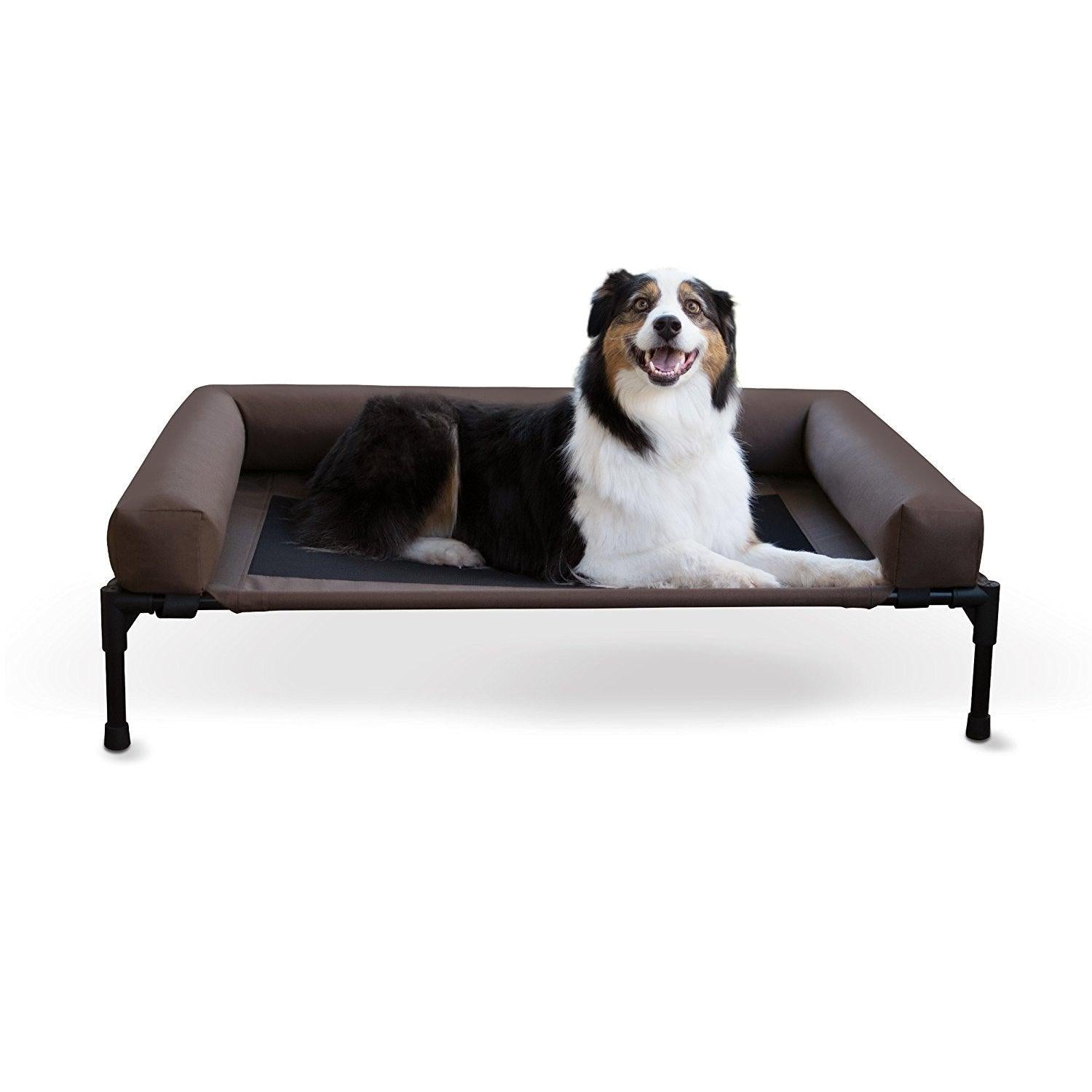 Wish List: Elevated Dog Bed with Bolster for HASRA (AL)