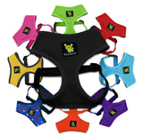 EcoBark Comfort & Control Dog Harness for Krys's Rescue Center