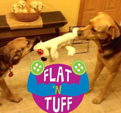 Large Flat 'n Tuff: No Stuffing, Squeak or Not for It's A Ruff Life Rescue