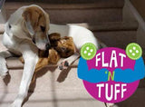 Wish List: Medium Flat 'n Tuff: No Stuffing, Squeak or Not for Animal Rescue League of Queen Anne's County