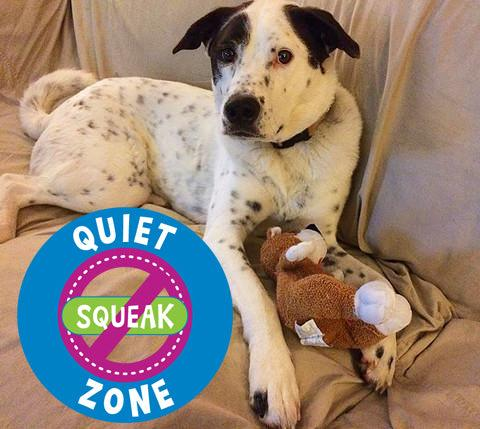 Small Stuffed NO SQUEAK Quiet Zone Dog Toys