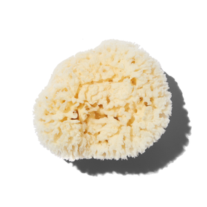 792703138912 - Baudelaire Natural Sea Wool Sponge