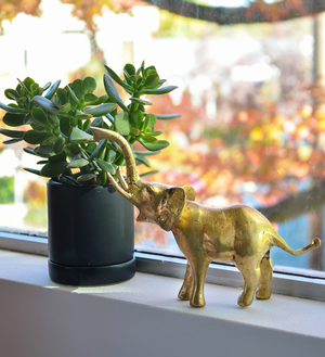 GIFTS FOR ANIMAL LOVERS