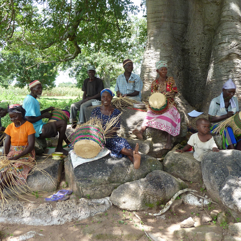 Ghanaian weavers weaving Bolga Baskets under a tree