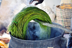 Veta Vera grass is bundled for the dye bath, to be made into a colorful green Bolga basket