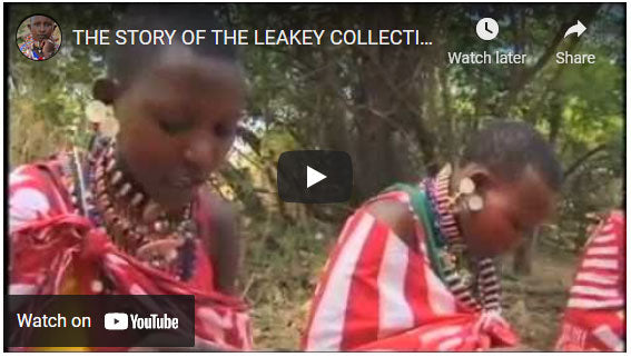 The Story Of Leakey Collection Video