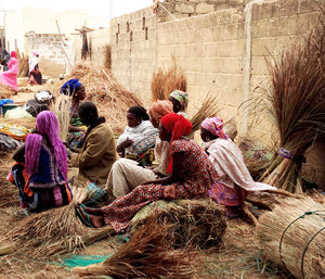 Wolof women with bundles of Cattail grass stalks, used for weaving African baskets and hampers