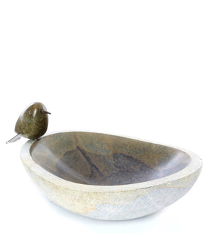 Small Serpentine Songbird Bird Bath