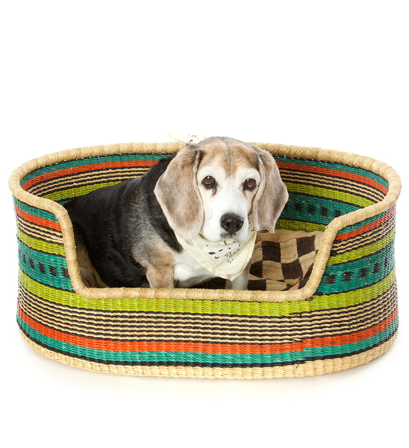 One of a Kind Medium Dog Bed in Colorful Stripes