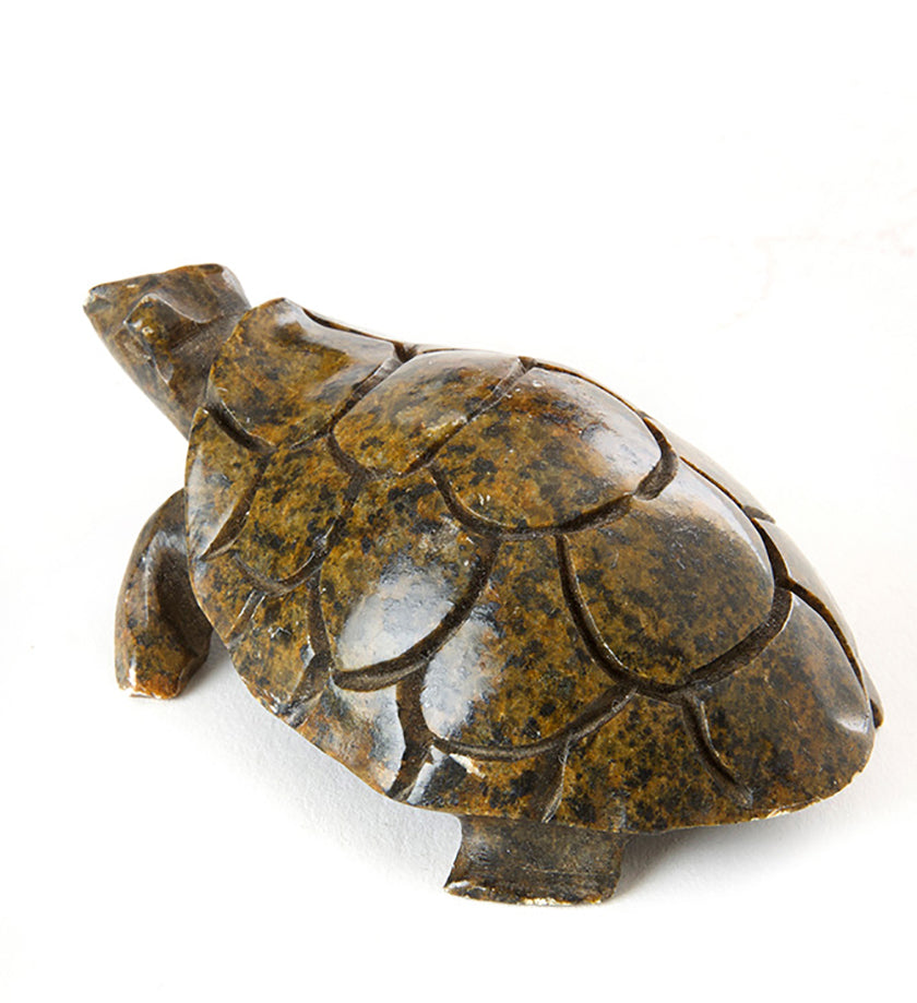 Stone Textured Box Turtle Sculpture