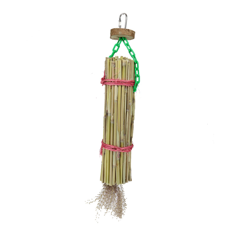 Parrot Lumber 039 Grass Snax - Exotic Wings and Pet Things
